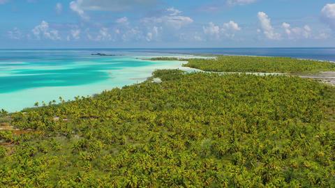 Aerial video of French Polynesia Tahiti Fakarava atoll island and Blue Lagoon Live Action