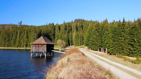 Nice pond with wooden building, path and forest sunny day Stock Video Footage
