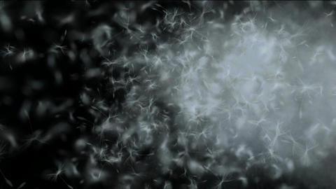 flying dandelion & catkins in smoke Stock Video Footage