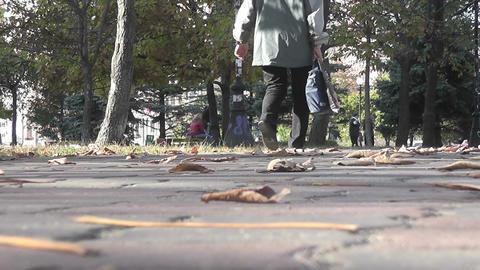 autumn park 02 Stock Video Footage