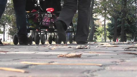 autumn park 06 Stock Video Footage