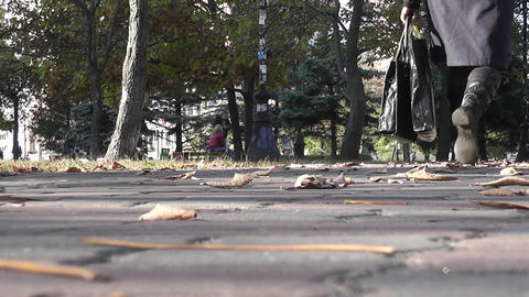 Autumn  Park  08 stock footage