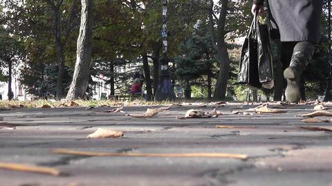 autumn park 08 Stock Video Footage