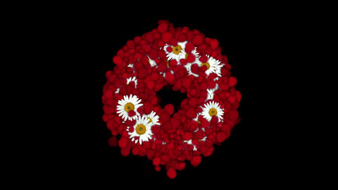 rose petals & daisy shaped wreath,wedding... Stock Video Footage