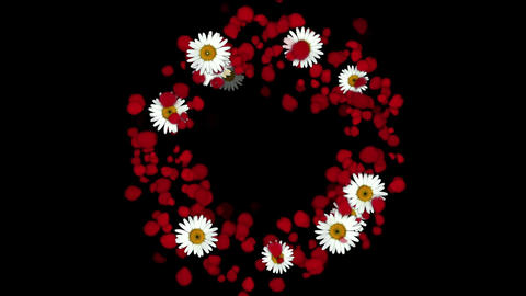 rose petals & daisy shaped wreath,wedding background,Valentine's Day Animation