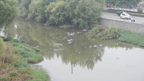 Pollution rivers,in the side of road Stock Video Footage