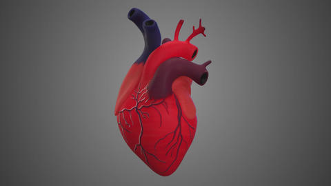 3d animated Heart rotation. Alpha channel included - Looping with alpha channel ビデオ
