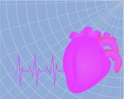 Heart beating Vector