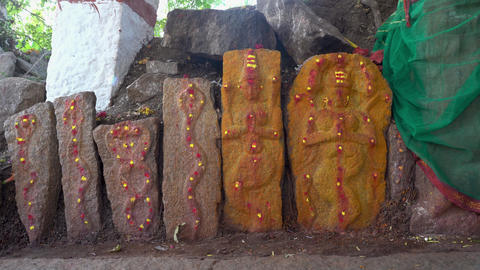 Snake temple in india outdoors Archivo