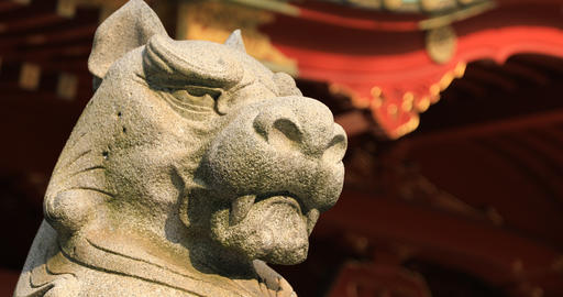 Statue guardian dog at Kanda shrine in Tokyo closeup ビデオ