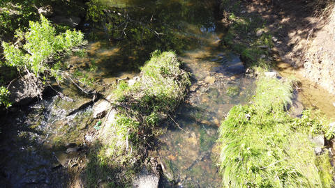 Creek flowing in Texas Live Action