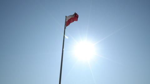 The polish flag Footage