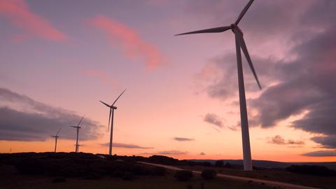 Wind turbine farm on beautiful purple sunset mountain landscape. Renewable Live Action