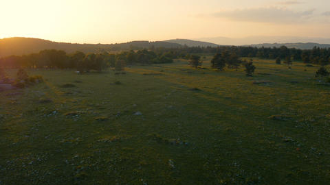 Aerial - Beautiful Green Landscape At Sunset stock footage