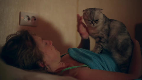 Cat wakes his sleeping mistress Footage