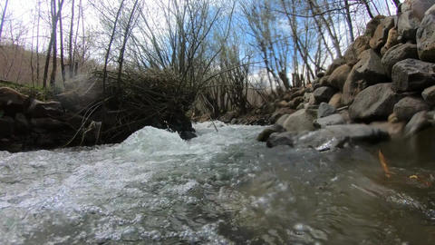 Under River view in the spring Footage