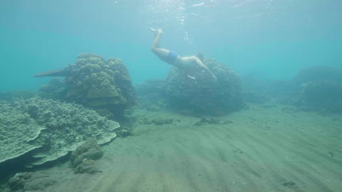 Tourist is snorkeling in mask and looking at fish and coral reef in ocean Footage