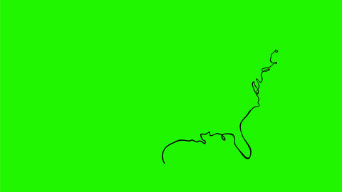 United States of America Self-Animated Drawing 2D Animation Animation