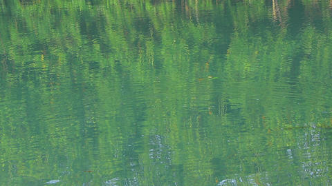 Ripples on the surface of an open river or lake, green reflections and circles Footage