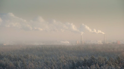 Fumes rising over a forest from plywood factory chimney Footage