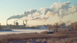 Plywood factory fumes rising during a cold winter day Footage