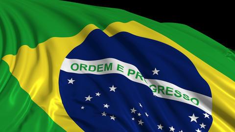 Brazilian Flag Videos animados