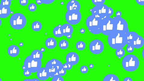 Modern Facebook blue like icons are increasing in green screen. Social media's notifications. Like Animation