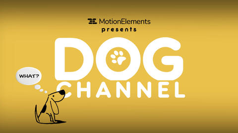 Dog Channel Broadcast Pack After Effectsテンプレート