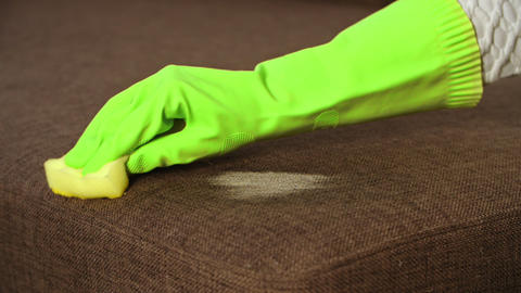 Young man worker cleans sofa in the room or office Live Action