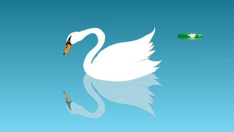 [alt video] Swan