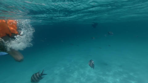 Adult girl drifts in the ocean near coral reef Footage