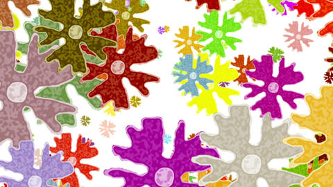 Cartoon Colored Big Flowers On White Background Animation