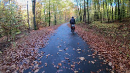 Bicycle drive through the forest. Autumn Footage