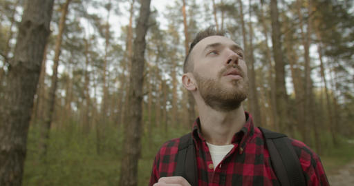 Healthy Breathing in the Forest Footage