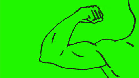 Arm Flexing Muscle Drawing 2D Animation Animation