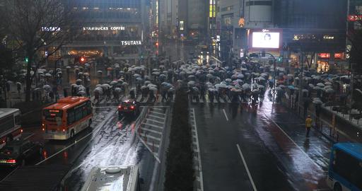 Walking people at Shibuya crossing in Tokyo rainy day high angle ライブ動画
