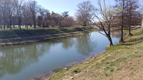 Small river and the river bed through the village with trees around the river Photo