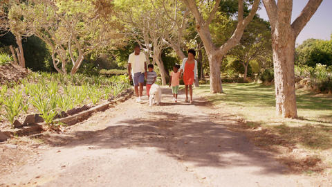 Cute family is walking in a park with it dog Live Action