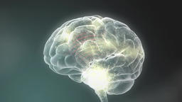 signals of neurons in the brain Footage