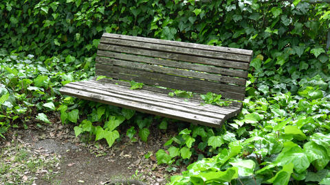 An aged dirty bench in Tokyo Live Action