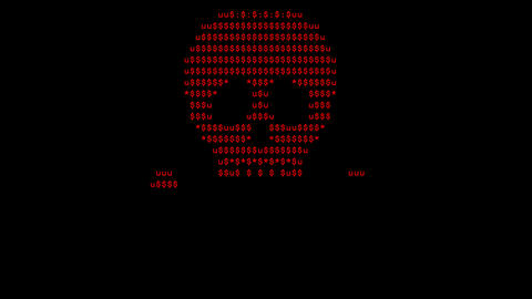 Screen created by computer virus, text skull and blinking screen Animation