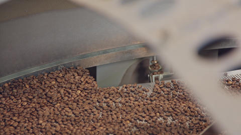Roasted coffee beans mixed in a machine in a coffee factory Live Action