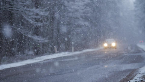 Car driving on Snow Blizzard on winter snow forest road Live Action