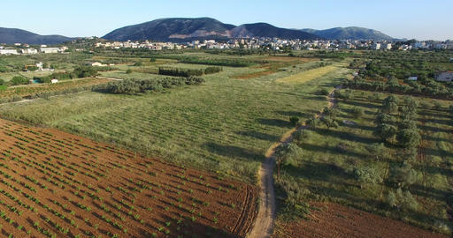 Above the Fields of Markopoulo in Athens GIF