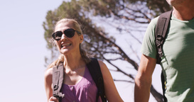 Hiking couple walking through forest Live Action