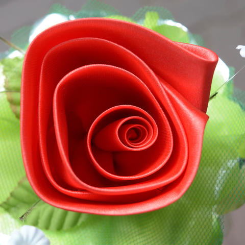 Red rose and Petal on top view