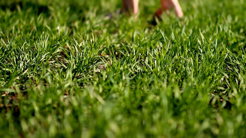 A girl is standing barefoot on a green meadow with lush green grass on a summer Live Action