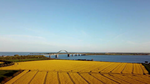 Fehmarn Bridge and Rapeseed Field Aerial View Archivo