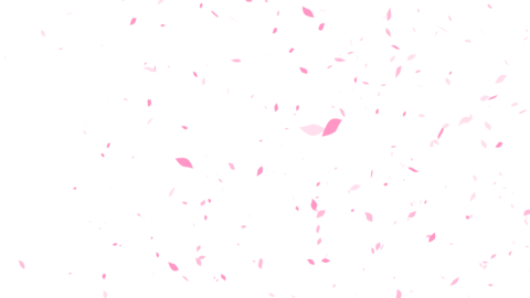 Mov69_sakura_ptkr_loop_alpha 0