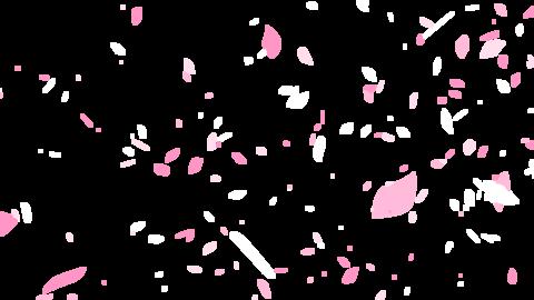 Mov69_sakura_ptkr_loop_alpha 1